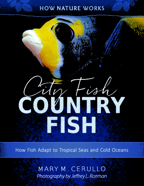 City Fish Country Fish: How Fish Adapt to Tropical Seas and Cold Oceans