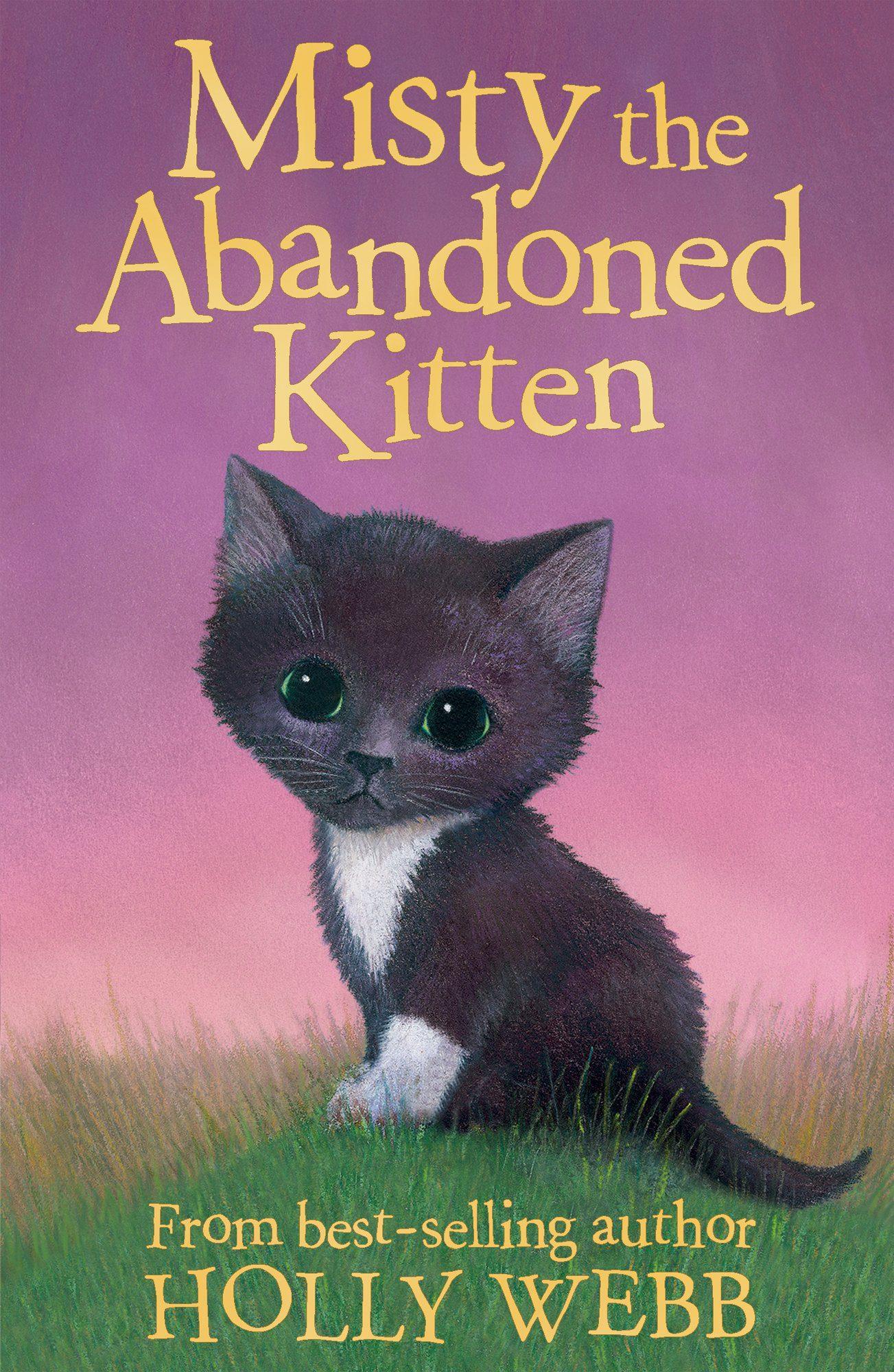 Misty the Abandoned Kitten