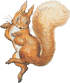 Squirrel-Nutkin