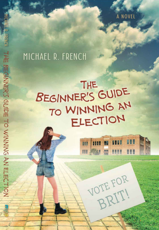 The Beginner's Guide to Winning an Election