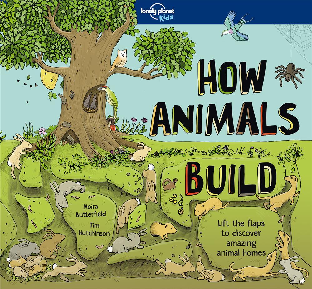 How Animals Build