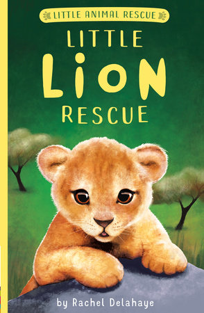Little Lion Rescue (Little Animal Rescue)