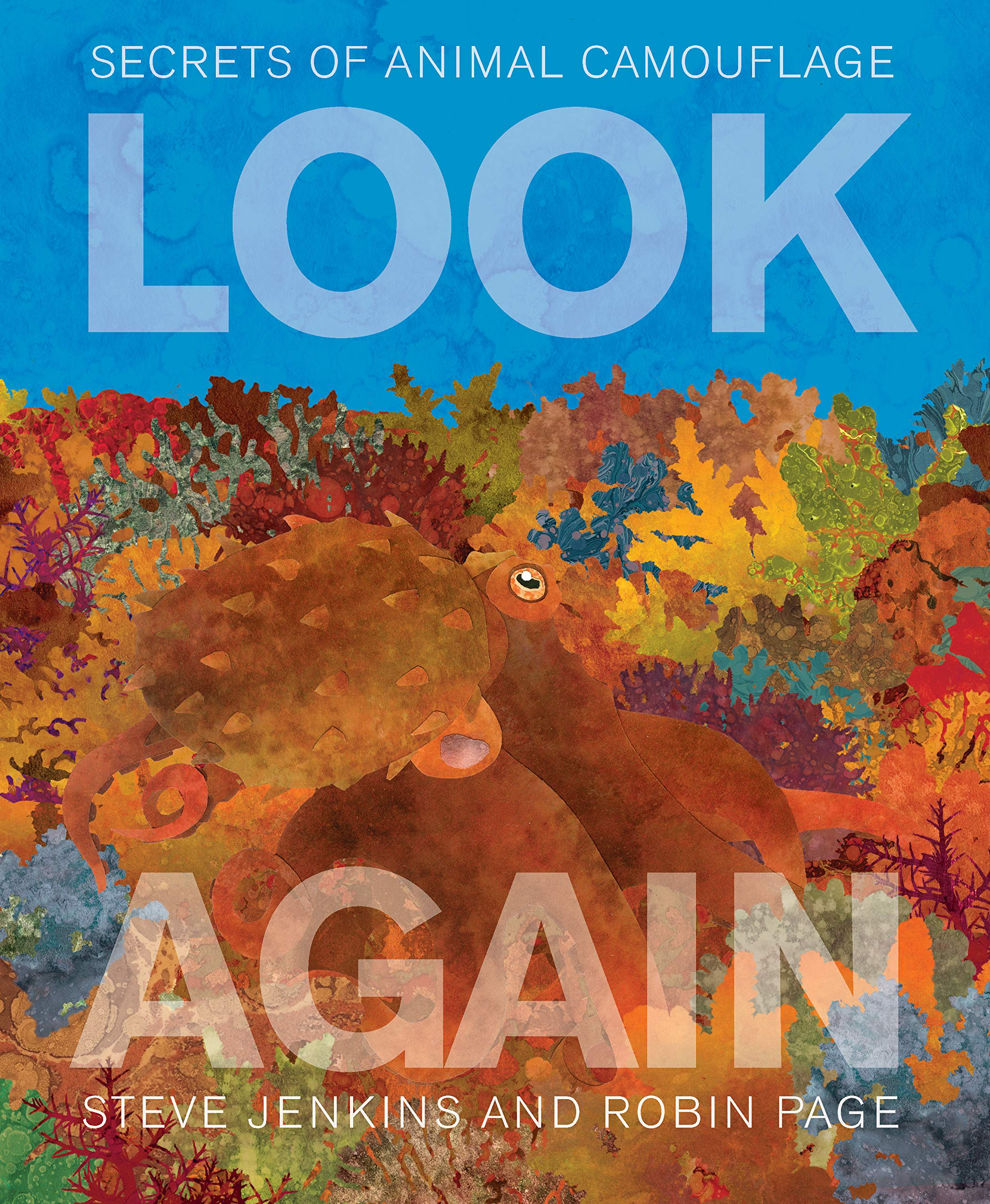 Look Again: Secrets of Animal Camouflage