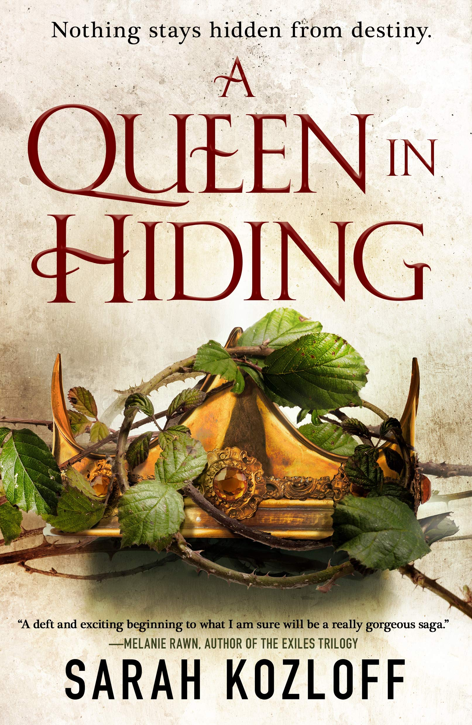 A Queen in Hiding (The Nine Realms)