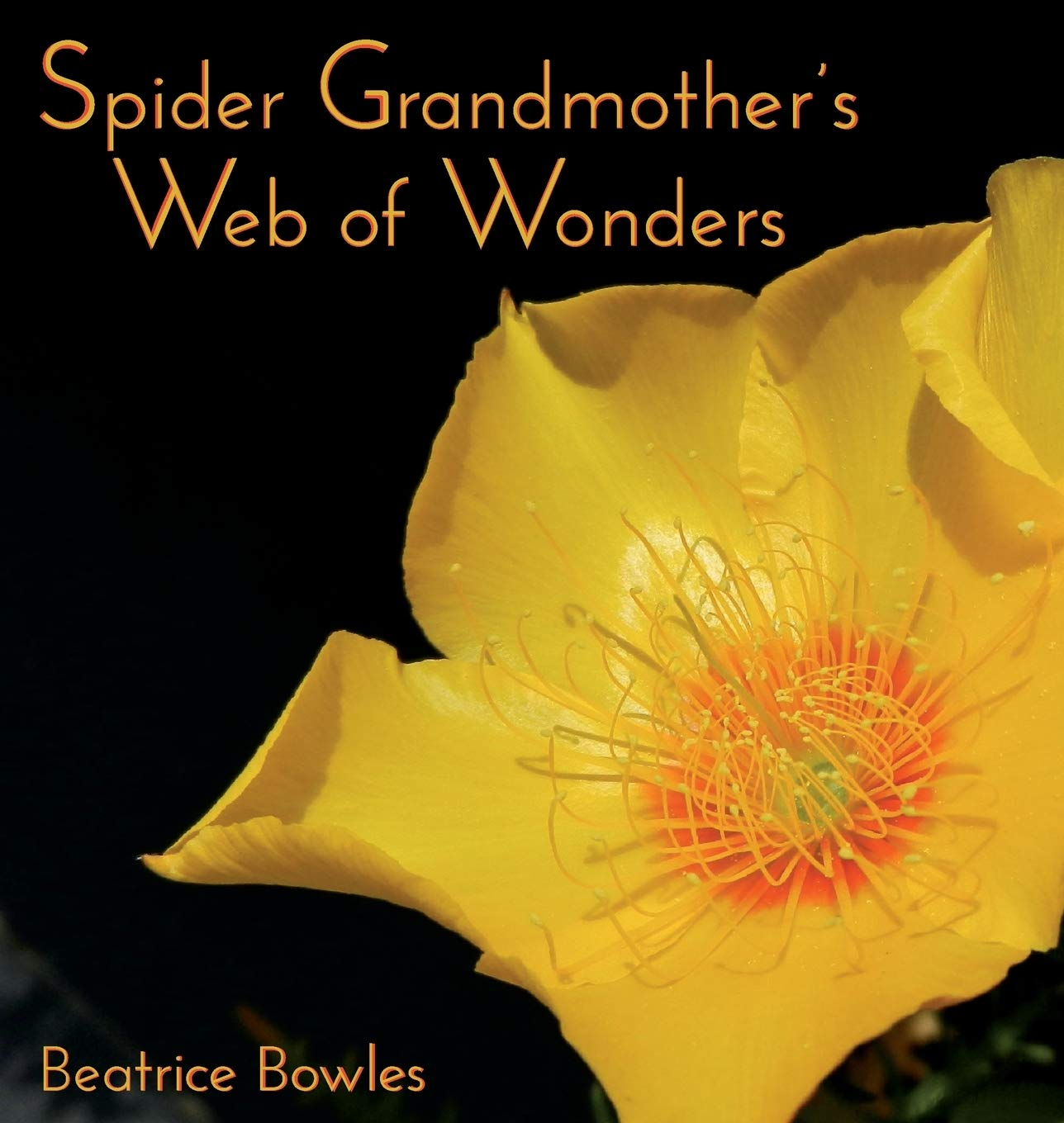 Spider Grandmother's Web of Wonders